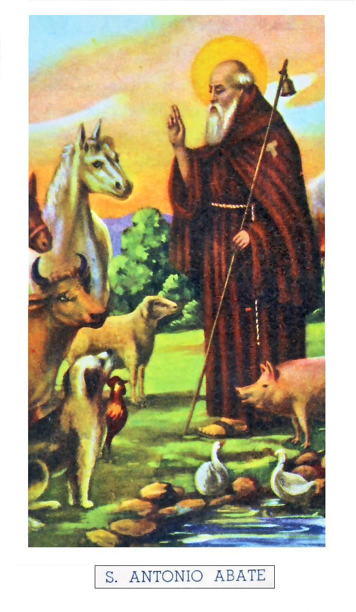 Si festeggia il 17 gennaio for Arredo bimbo sant antonio abate